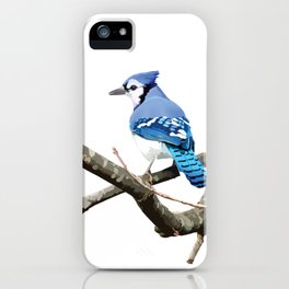 Blue Jay in Branches iPhone Case
