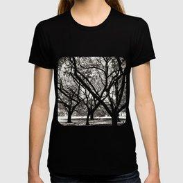 Trees of Harajuku T-shirt