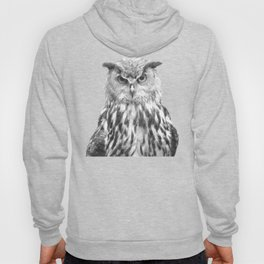 Black and white owl animal portrait Hoody