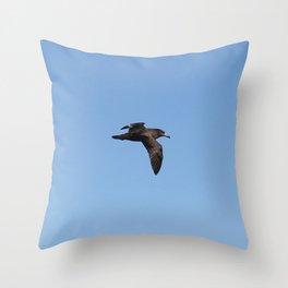 Short-Tailed Shearwater 1 Throw Pillow