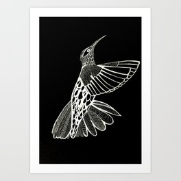 Black and White Hummingbird Art Print