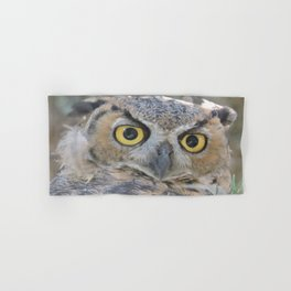 Young Owl at Noon Hand & Bath Towel