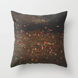 Bieszczady Throw Pillow