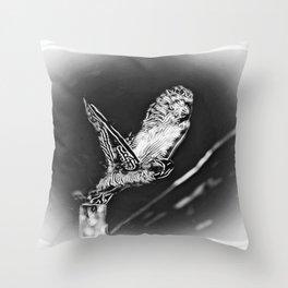 Bird Models: Snow Owl Resplendence 01-02 Throw Pillow