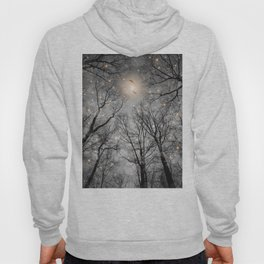 Nature Blazes Before Your Eyes 2 (Ash Embers) Hoody