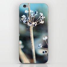 Simple Beauty iPhone & iPod Skin