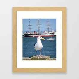 seagull and the sea Framed Art Print