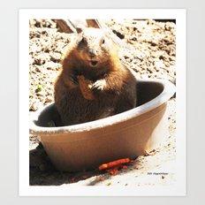 A Bowl Of Groundhog And Veggies Art Print