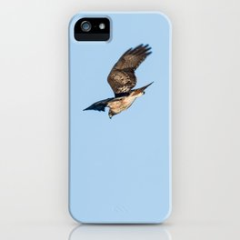 Bird - Red-Tailed Hawk - Study 1 iPhone Case
