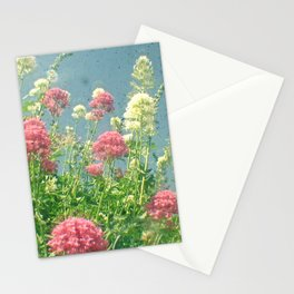 Raspberries and Cream Stationery Cards