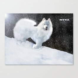 "Samoyed Portrait ""Snowy Night"" Niya Canvas Print"
