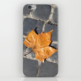 leaf in the street iPhone Skin
