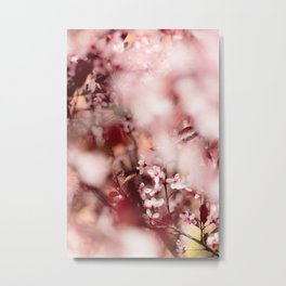 Spring in my Life - Blooming Blossom Metal Print