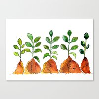 succulents Canvas Prints featuring Succulents by Gosia&Helena