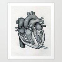 anatomical heart Art Prints featuring Anatomical Heart by Maria G. Vieyra Ortiz