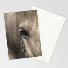 Horse look Stationery Cards