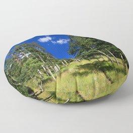 Watercolor Landscape, Lost Creek Wilderness 09, Colorado Floor Pillow