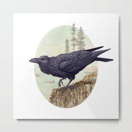 Raven of the North Atlantic Metal Print