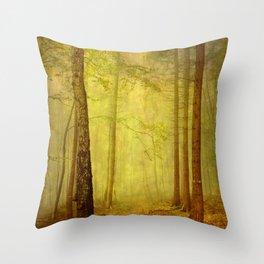 fairytale path Throw Pillow