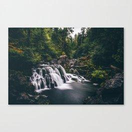 Sawmill Falls on Opal Creek, Oregon Canvas Print