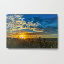 Wildflower Sunrise Metal Print