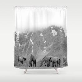 Highland Horses Shower Curtain