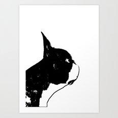 Boston Terrier Dog Art Art Print