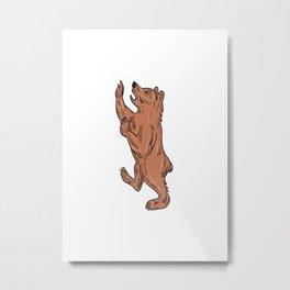 American Black Bear Prancing Drawing Metal Print