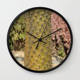 Pachypodium lamerei  Wall Clock