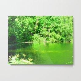 Quiet Pond Metal Print