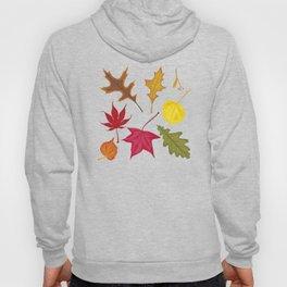 Autumn. Leaves. Hoody