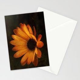 Dark-Osteo Stationery Cards