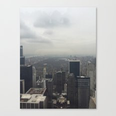 Central Park in the Fog Canvas Print