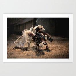 Cockfighting 4 Art Print