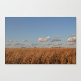 Fluffy Little Clouds Canvas Print