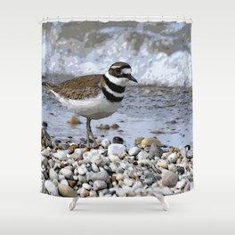 Shore Bird Shower Curtain