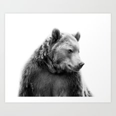 Bear Portrait Art Print
