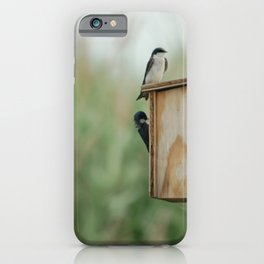Birds at New Jersey Meadowlands Nature Preserve iPhone Case