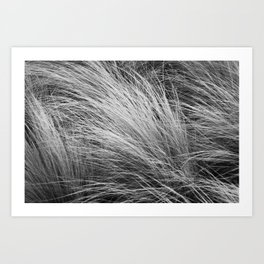 Grass Texture In Black And White Art Print
