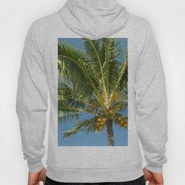 Hawaiian Coconut Palm Tree Hoody