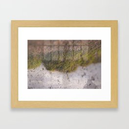 At Framed Art Print