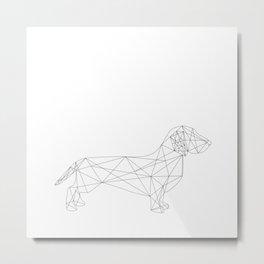 Dachshund Metal Print