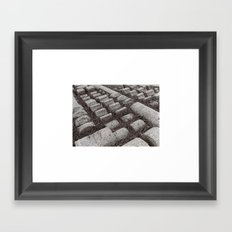 Pine Needles Framed Art Print
