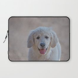 Young Golden Retriever breed dog with light fur stares into your eyes Laptop Sleeve