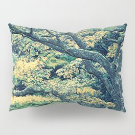 Trees of Calming Being Pillow Sham