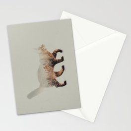 Cat: Maine Coon Stationery Cards