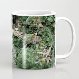 A Snail's Home Coffee Mug