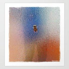 Winter Bee spy on the glass Art Print