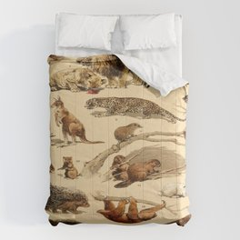 Popular History Of Animals Mammals Vintage Scientific Illustration Educational Diagrams Comforters