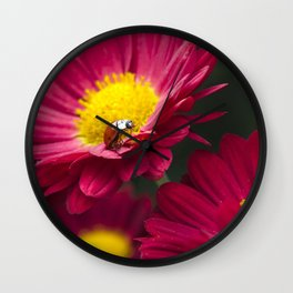 Little Red Ladybug Wall Clock